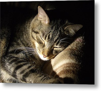 Sleeping Beauty Metal Print by Leslie Manley