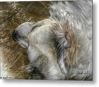 Sleeping Bella Metal Print