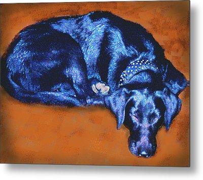 Sleeping Blue Dog Labrador Retriever Metal Print