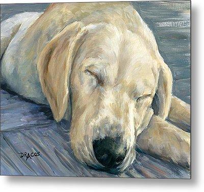 Sleeping Labrador Retriever Puppy Metal Print by Dottie Dracos