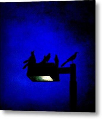 Sleepless At Midnight Metal Print by Trish Mistric