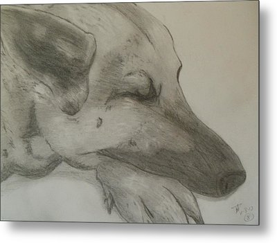 Sleepy Shepherd Metal Print