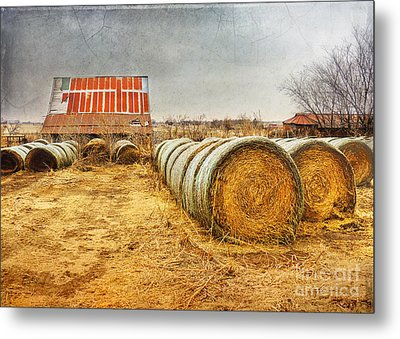 Slumbering In The Countryside Metal Print
