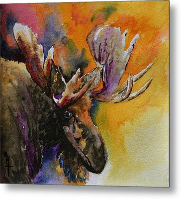 Sly Moose Metal Print by Beverley Harper Tinsley