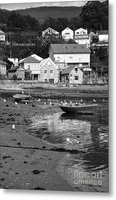 Small Boats And Seagulls In Galicia Bw Metal Print by RicardMN Photography