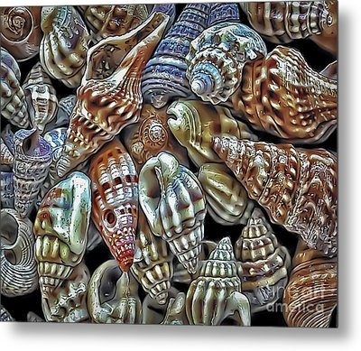 Small Sea Shell Collection Metal Print by Walt Foegelle