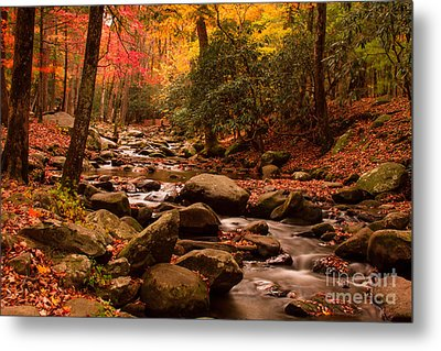 Metal Print featuring the photograph Small Stream by Geraldine DeBoer