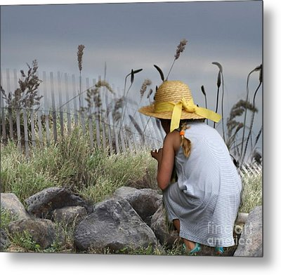 Small Wonders Metal Print by Mary Lou Chmura