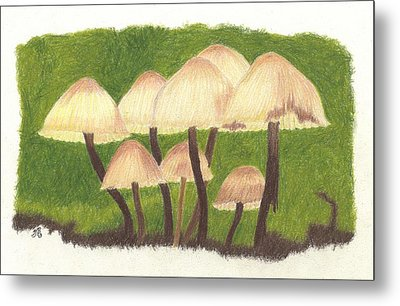 Small World Metal Print by Sheila Byers