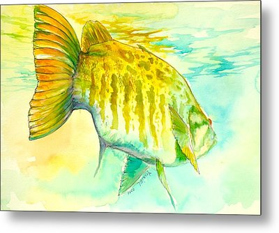 Smallie Patrol Metal Print by Yusniel Santos