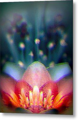 Smart Lotus Concept Metal Print by Li   van Saathoff