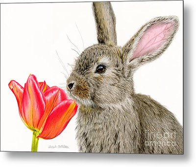Smells Like Spring Metal Print by Sarah Batalka