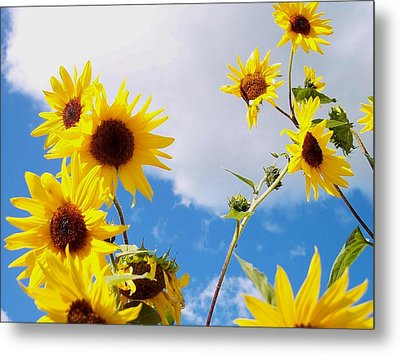 Metal Print featuring the photograph Smile Down On Me by Mary Wolf