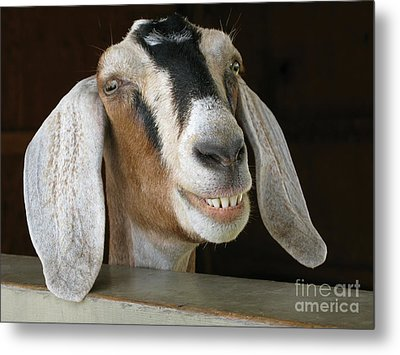 Smile Pretty Metal Print