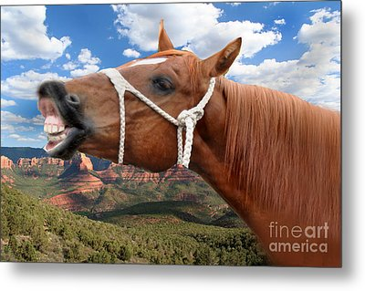 Smile When You Say That Metal Print by Gary Keesler