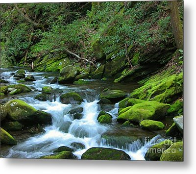 Smokey Mountain Spring Metal Print by Don F  Bradford
