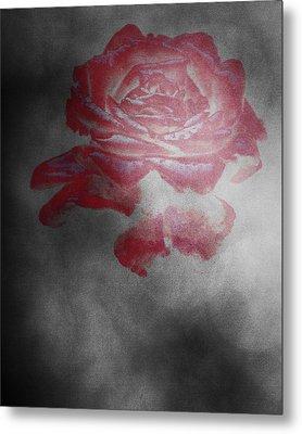 Smokey Rose Metal Print