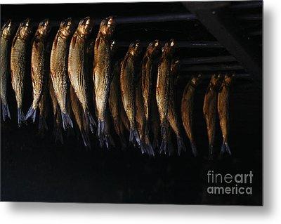 Smoking Fish Metal Print by Patricia Hofmeester