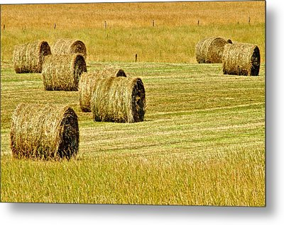 Smoky Mountain Hay Metal Print by Frozen in Time Fine Art Photography