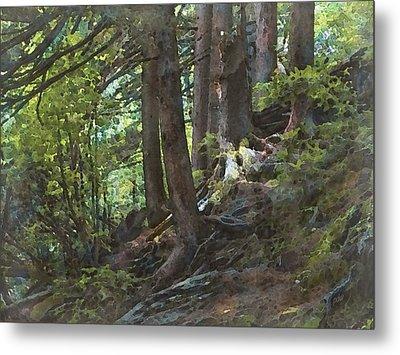 Smoky Mountain Slope Metal Print by Philip White