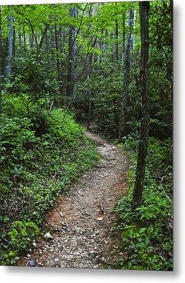 Smoky Mountain Trail Metal Print