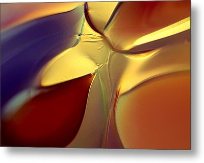 Smooth Moves Metal Print by Omaste Witkowski