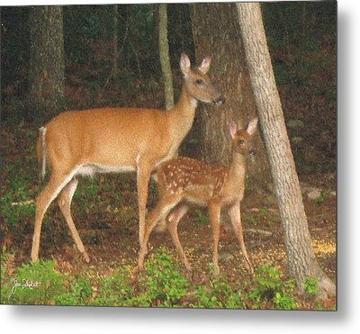 Smudgie And Fawn Pastel Metal Print
