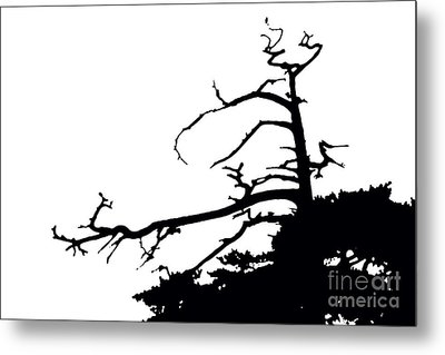 Snag Metal Print by Russell Christie
