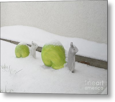 Snails In Snow Metal Print