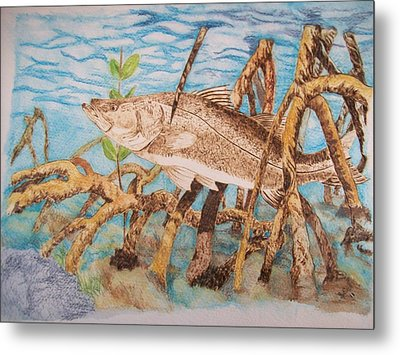 Snook Original Pyrographic Art On Paper By Pigatopia Metal Print by Shannon Ivins