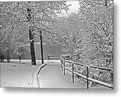 Metal Print featuring the photograph Snow Along The Path by Andy Lawless