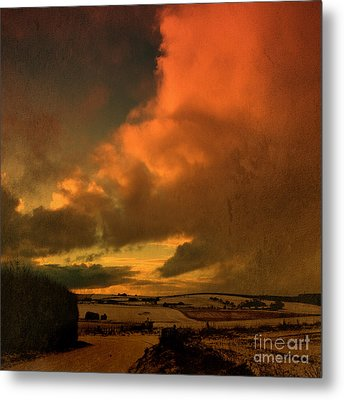 Snow And Fire Metal Print by Liz  Alderdice