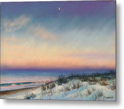 Snow At Bay Head Metal Print by Joan Swanson