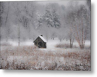 Snow At Morris Arboretum Metal Print by Bill Cannon