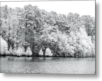 Snow Covered Metal Print