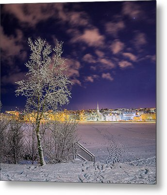 Snow Covered Trees And Frozen Pond Metal Print by Panoramic Images