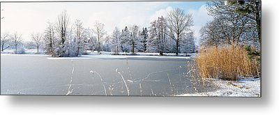 Snow Covered Trees Near A Lake, Lake Metal Print by Panoramic Images
