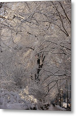 Snow Covered Trees On Central Park West Metal Print