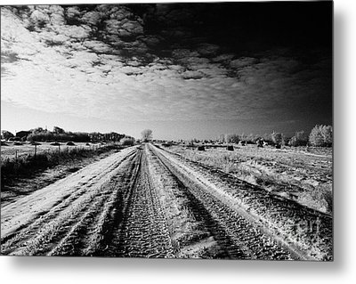 snow covered untreated rural small road in Forget Saskatchewan Canada Metal Print by Joe Fox