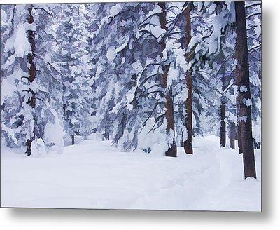 Snow-dappled Woods Metal Print by Don Schwartz