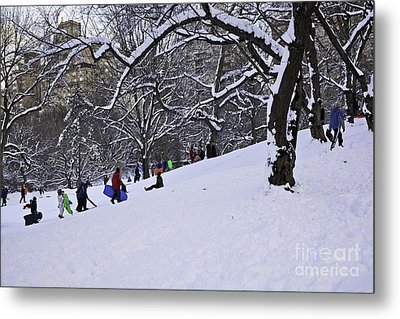 Snow Day In The Park Metal Print by Madeline Ellis