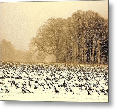 Snow Day Metal Print by Steve Godleski