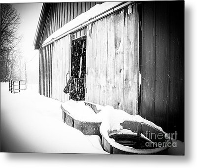 Snow Day Metal Print by Sue OConnor