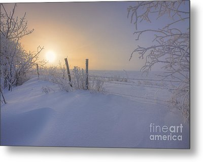 Snow Drifts And Barbed Wire Metal Print by Dan Jurak