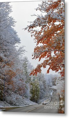 Snow In Autumn 22 Metal Print by Terri Gostola