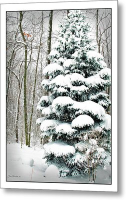 Snow In Ohio Metal Print by Joan  Minchak