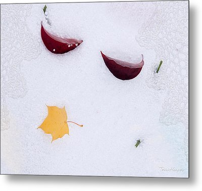 Snow Kissed Metal Print