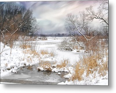Snow Lake Metal Print by Mary Timman