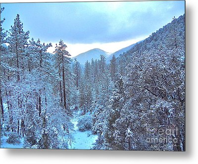 Snow Magic Metal Print by Gem S Visionary