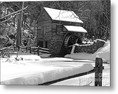 Snow On The Fence In Black And White Metal Print by Paul Ward